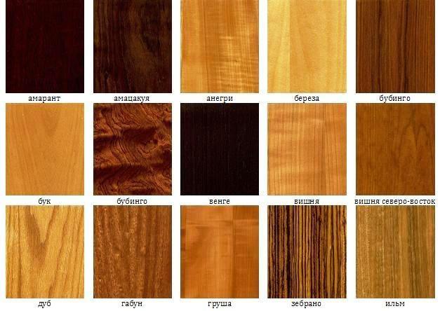 породы дерева