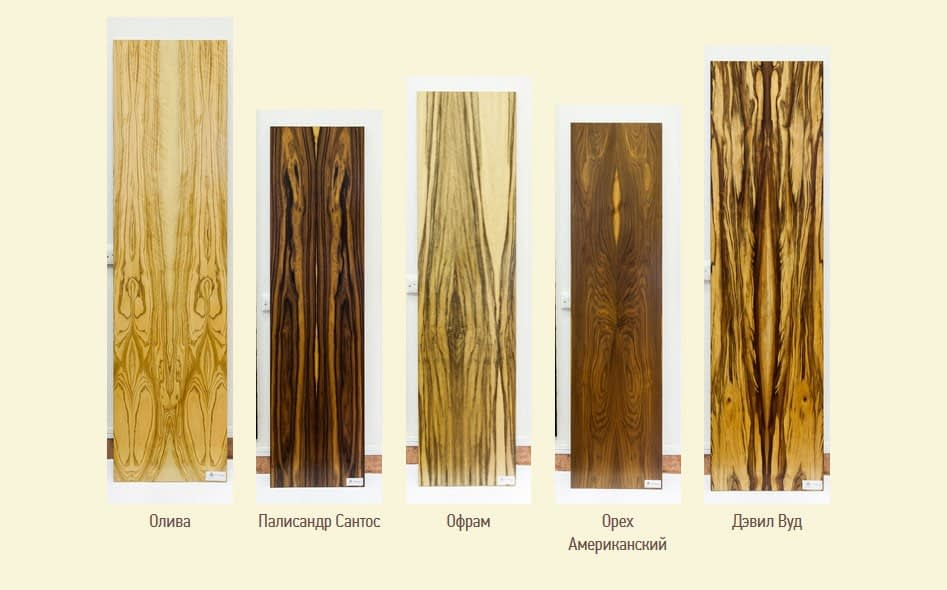 экзотические породы дерева
